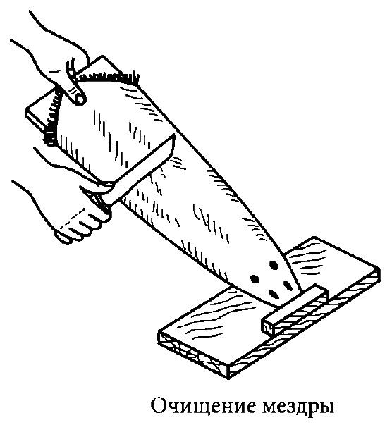 Обезжиривание снятых шкур, правка и сушка шкурки, порядок и последовательность работ.