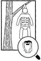 Шалаш-гамак, сидячий гамак, убежище из камыша на болоте в аварийной ситуации для потерпевших бедствие.