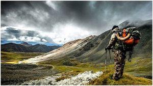 Лучшие времена охоты: когда идти искать различные игры