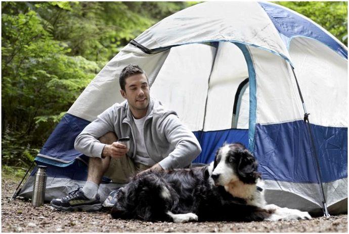 Кровать для собаки с рюкзаком: никого не оставляй