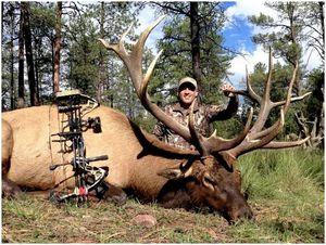 Советы по охоте на лося: пять напоминаний, чтобы максимально использовать ваше следующее охотничье путешествие на лося