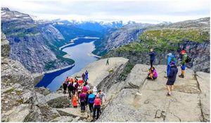 Контрольный список дня прогулки: десять основных элементов и многое другое