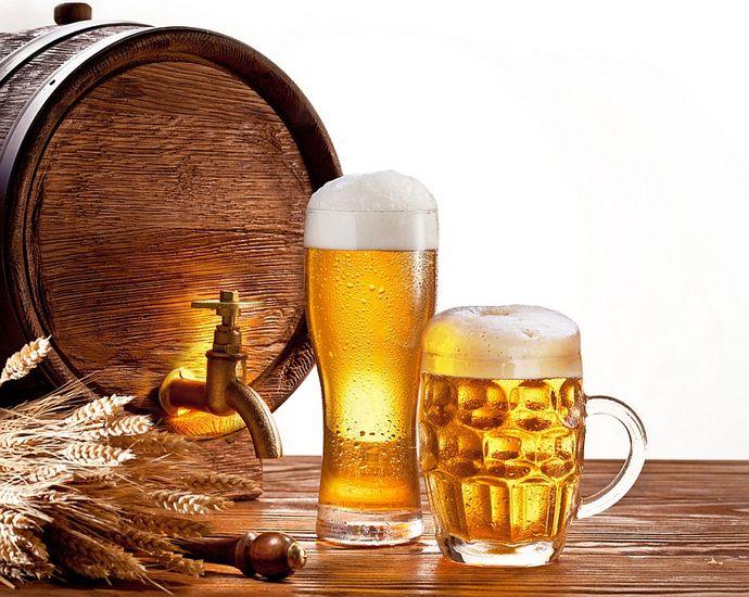 Домашнее пиво, порядок приготовления, рецепты домашнего пива из стручков бобовых, из пырея, из можжевельника, простое домашнее пиво без зерна и солода.