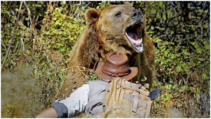 Как напугать медведя: голые нужды