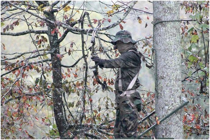 Лучший изогнутый лук для охоты: положите руки на правильное оружие
