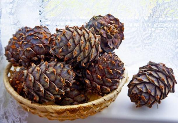 Кедровые орехи, рецепты настоек на кедровых орехах с медом, ванилином, гвоздикой, цедрой апельсина, шиповником, щепой дуба и хвоей сосны.