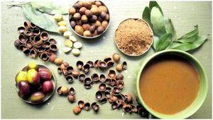 Приготовьте себе еду: 8 способов есть желудь