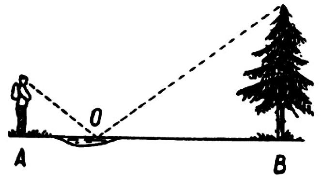 Простые способы определения высоты дерева или любого другого предмета по тени, шесту, лужице или зеркалу, прямоугольному треугольнику.