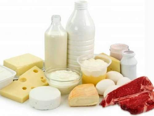 Влияние жиров, углеводов и белков на энергетические процессы в организме человека, основные источники жиров, углеводов и белков среди продуктов питания.