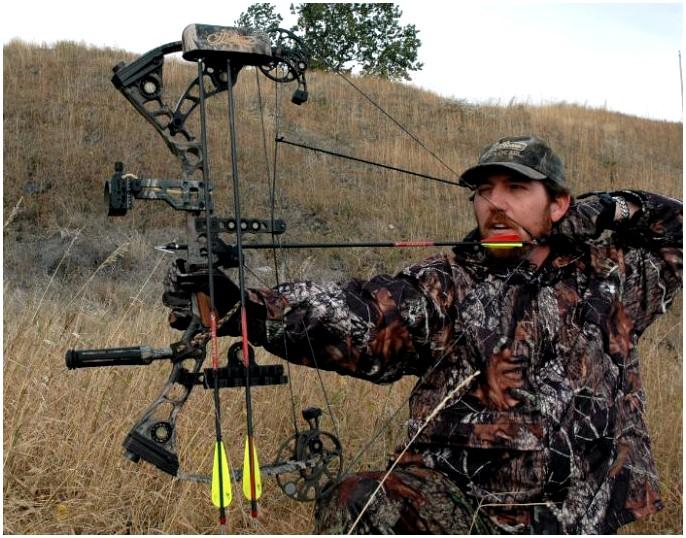 Лучший охотничий лук: максимально используйте свою охоту