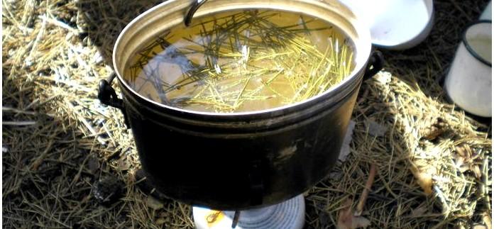 Настои, отвары и настойки из лекарственных трав, способы приготовления, соотношения и сроки хранения в полевых условиях.