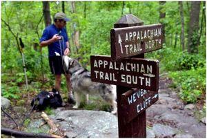 Приложения Appalachian Trail: факты Trail и как использовать приложения