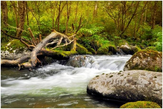 Как сделать дистиллированную воду: простые решения для авантюрных людей