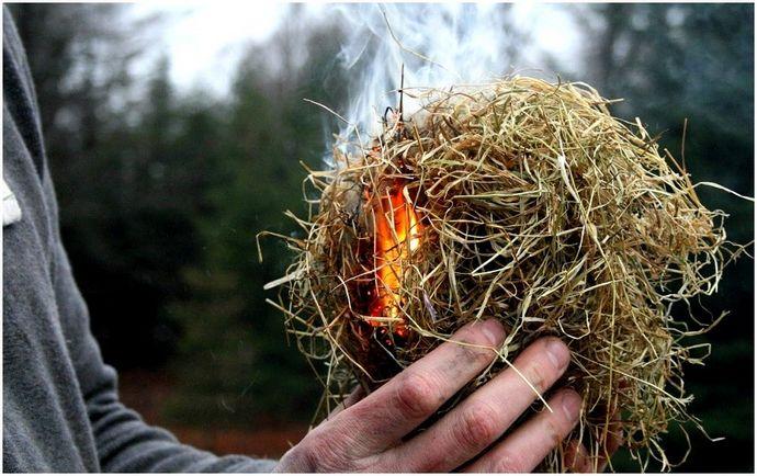 Как пережить потерю в лесу: 10 спасательных трюков