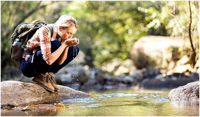 Жить в лесу: наслаждаться всем, что может предложить природа