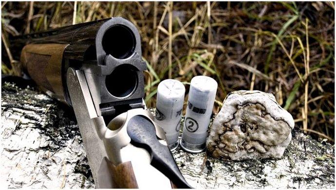 Best Survival Shotgun: инструменты и тактика для выживания