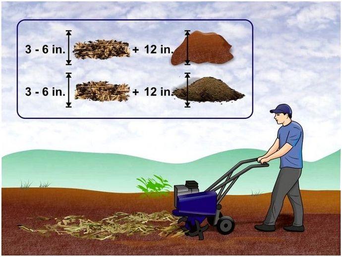 Как сделать мульчу: методы выживания в сельском хозяйстве