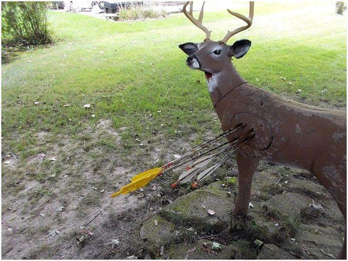 Лучшие стрелы для охоты: улучшите свой охотничий опыт с правильным оборудованием