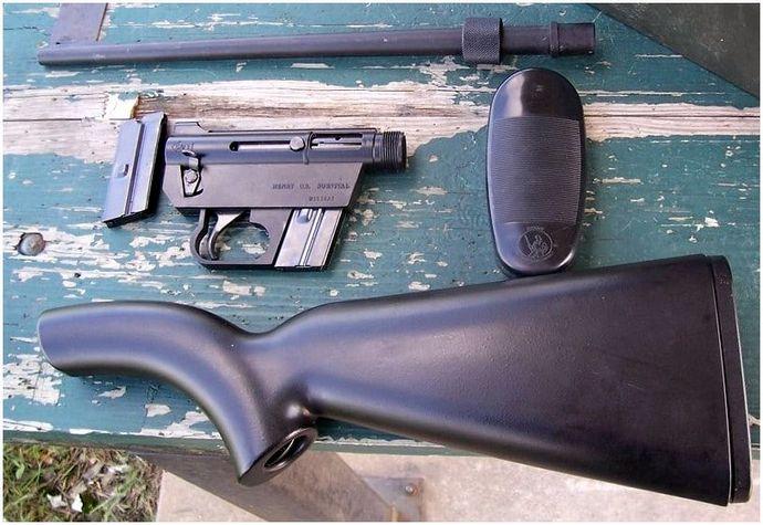 Лучшая штурмовая винтовка в ситуации выживания: Обзор