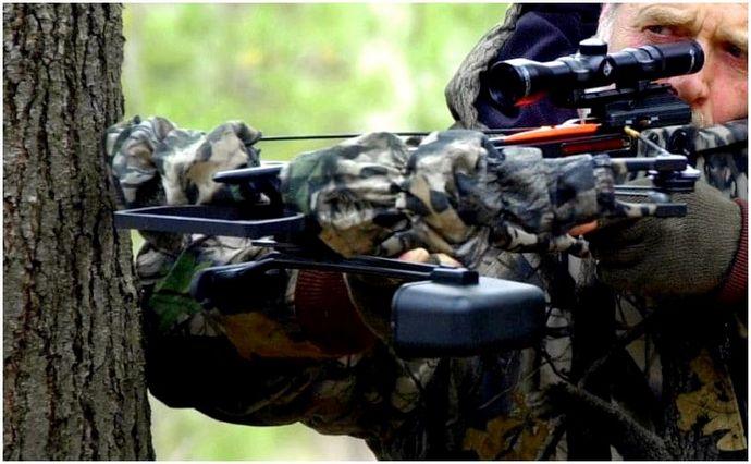 Лучший охотничий арбалет: лучшие товары на рынке