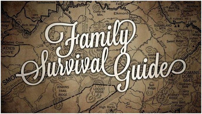 Система выживания семьи: цели, структура и значение системы