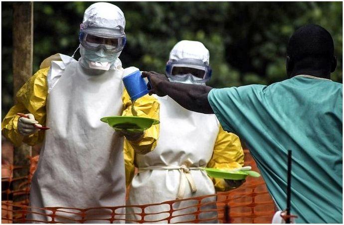 Вирус Эбола: происхождение, передача, симптомы и восстановление вируса