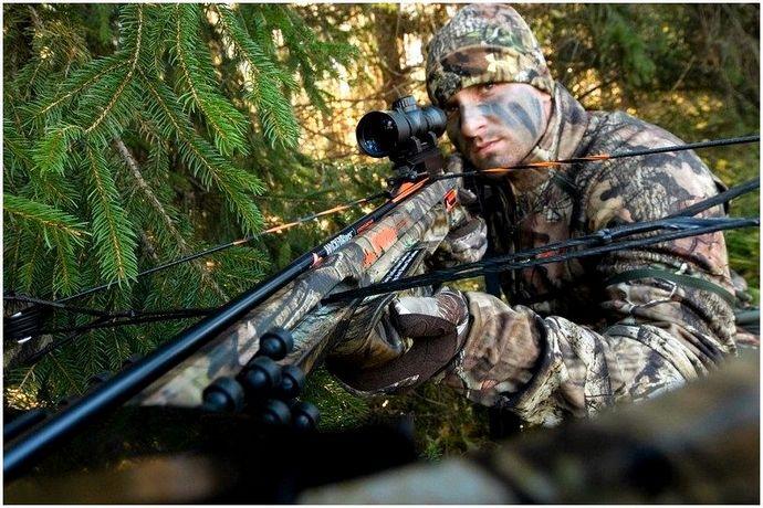 Советы по охоте на арбалеты: руководство для начинающего охотника
