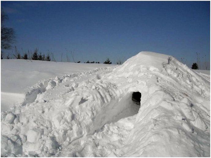 Как построить приют для выживания: выбраться из стихий в спешке