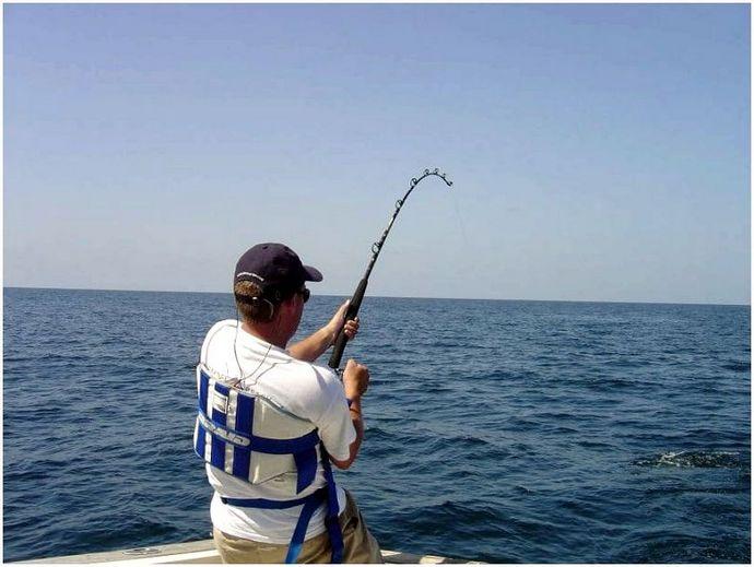 Как ловить форель: советы для идеального улова