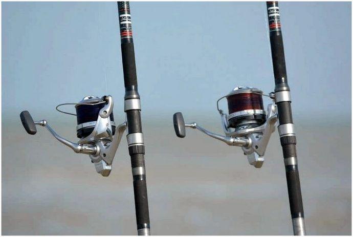 Как ловить рыбу: уроки для начинающего рыбака