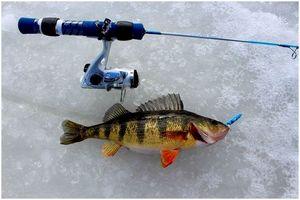 Советы по подледной рыбалке: сравнение тогда и сейчас