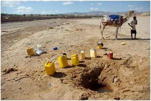 Выживание в воде: советы экспертов по выживанию