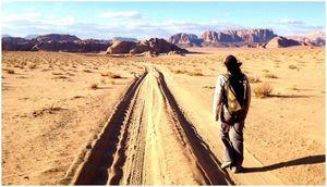 Выживание в пустыне: советы и рекомендации по выживанию под палящим солнцем