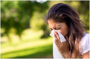 Домашние средства от аллергии: природные решения сезонных проблем