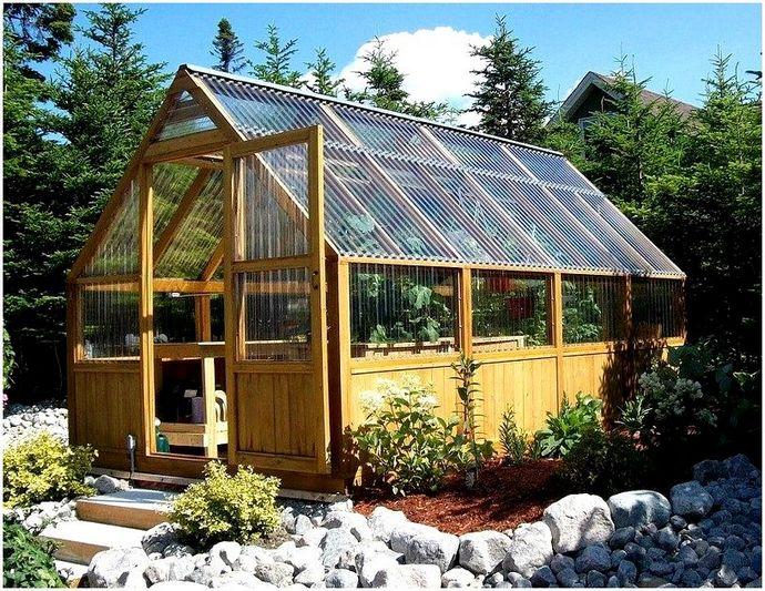 Как построить теплицу: выращивайте свои овощи дома