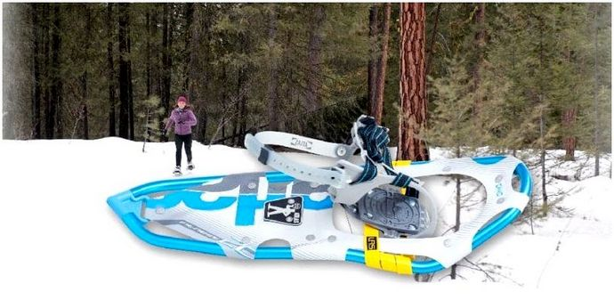 Лучшие снегоступы: исследуйте природу, плавающую на порошковом снегу