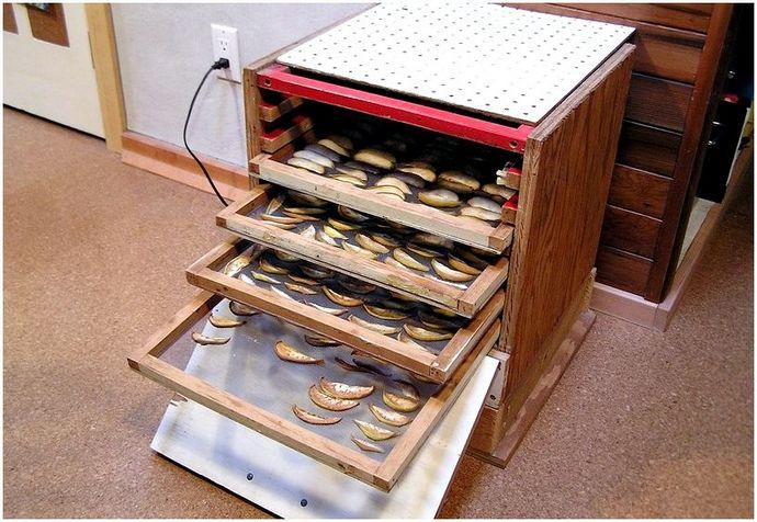 Как обезвоживать пищу: пошаговые инструкции для домашнего дегидратора