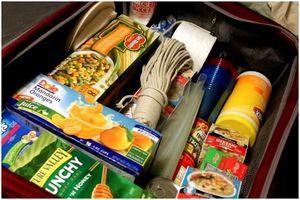 Список скоропортящихся продуктов: максимально использовать продукты