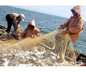 На Кузбасе браконьеры наловили рыбы на 400 тысяч рублей