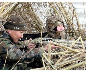 Только в трёх районах Ульяновской области будет разрешена охота на гусей