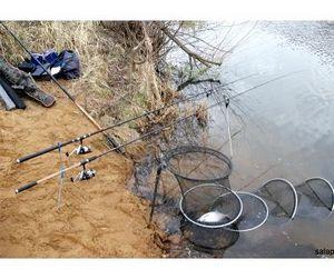 Квоты для рыбаков-любителей