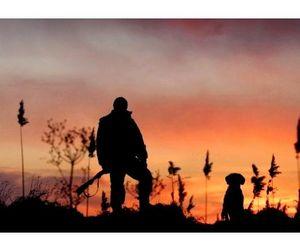 С 18 августа в большинстве регионов страны открывается сезон охоты