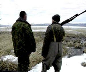 Перелётные птицы проигнорировали Сахалин