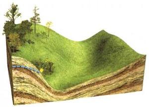 На склонах гор и холмов место близкого залегания грунтовых вод укажет сочная зеленая трава
