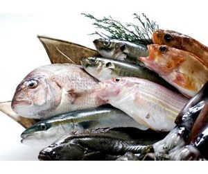 Поправки в закон о рыболовстве запрещают рыбачить водолазам и вводят регистрацию неводов