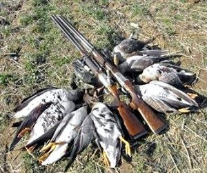 Крым делает ставку на охотничий туризм