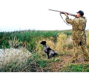 Башкортостан - охота открыта