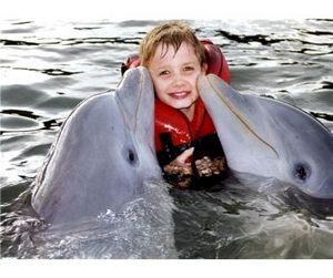 Тысячи дельфинов погибают от рук перуанских рыбаков