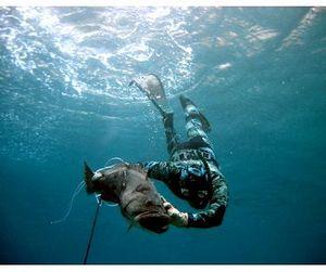 Правила подводной охоты в Беларуси изменены