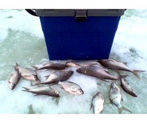 Жители Удмуртии отстояли своё право на свободную рыбалку